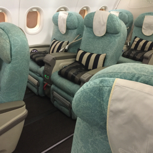 Etihad A320 Business Class