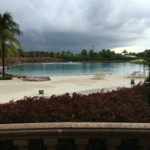 Dolphin Pool @ Atlantis, Bahamas