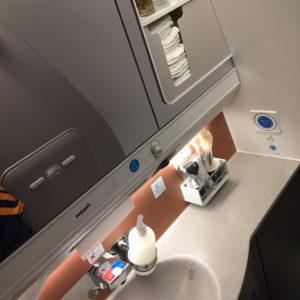 Business Class Restroom