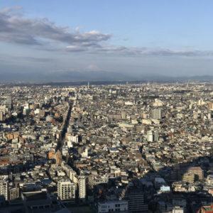 Mt. Fuji from Park Hyatt Tokyo